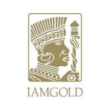 89cc813a98 ... update from its 2018 drilling program completed at its Nelligan joint  venture project (IAMGOLD Corporation  51%